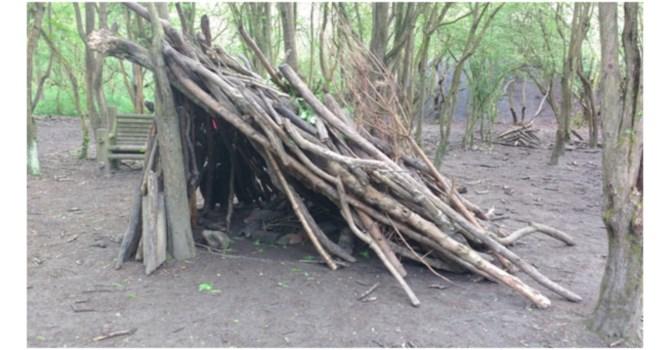 Shelter Building – Ranger Abbie
